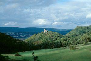 Le château de Montfaucon (vue lointaine)